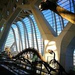 Photo de Principe Felipe Science Museum