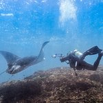 Diving with OK Divers in Padangbai