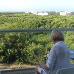 Garden, jungle and sea view