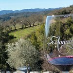 From boutique, family owned wineries to our request of Duckhorn, Squire Livery Tours helped us p