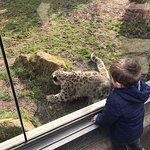 Photo de Twycross Zoo
