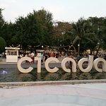 Photo de Cicada Market