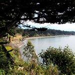 Cliffs and New Brighton State Beach