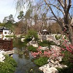 Bild från The Huntington Library, Art Collections and Botanical Gardens