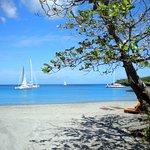Anse Cochon beach.