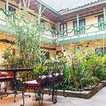 Jardines con flores y luz natural, ambiente tranquilo