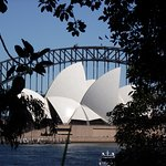 Looking through to the opera house