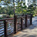A zig-zag bridge in the Morikami Japanese Gardens