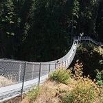 The suspension bridge is long.