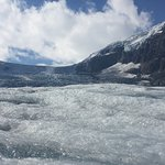 Photo of Columbia Ice Field