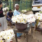 selling flowers to temple goers