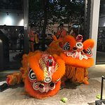Welcoming the Year of 🐶 with Night Lion Dance!!