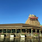 a view of Rainforest Cafe from the lagoon in Disney Springs