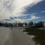 Photo de Florida Outdoor Adventures - Guided Everglades Kayak Tours