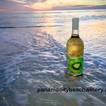 Kiwi Wine - Enjoy refreshing Kiwi wine, made in Florida with 100% real Kiwis!