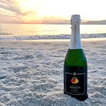 Mango Sparkling - Florida wine made with 100% real mangoes.