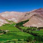 Tour al Mistico Valle del Elqui