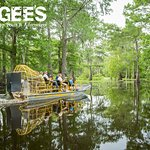 Airboats are a great way to explore the deepest portions of the swamp!