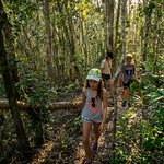 Explore the many bushwalks on the islands in the Whitsundays