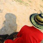 ภาพถ่ายของ หมู่บ้านช้างอโยธยา