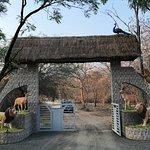 Gir Forest Sanctuary exit gate