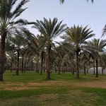 Photo of Al Majaz Waterfront