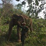 Photo of Elephant Conservation Center