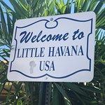 リトル ハバナの写真
