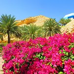 Photo of Shangri La Barr Al Jissah Resort & Spa - Al Bandar Hotel