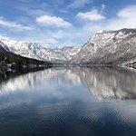 Mamut Slovenia Foto