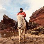 Foto de Viking Horses