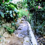 """The narrow """"streets"""" of the rural part of Yelapa."""