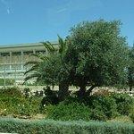 Photo of Knesset (Parliament)