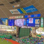 Photo of Seibu Prince Dome