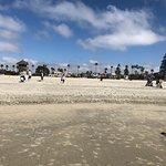 Coronado Island의 사진