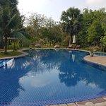 The pool is very nice