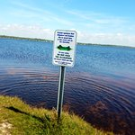 The Dog Park at Gulf State Park - Lake Shelby รูปภาพ