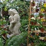 Tallinn Botanic Garden Foto