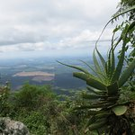 Afrique Sud 192_large.jpg