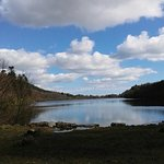The Lake in Castlewellan Forest Park