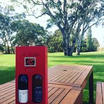 Barossa Valley Tour Photos