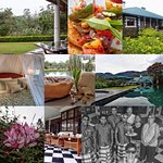 Collage of bungalow,food and garden