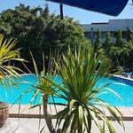 Palm Garden لوحة