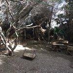 Photo de Botanical Garden Of Eilat