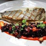 BRANZINO (mediterranean sea bass, forbidden rice salad, piquillo pepper purée)