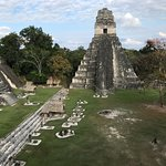 Tikal, one of several plazas. 3/16/18