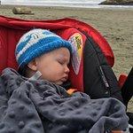 Dinkman chose long beach as a prime spot for a tasty nap