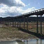 Billede af Horaibashi Bridge