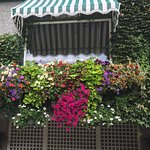 Awning with flower window boxes...