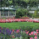 Vibrant colours throughout the gardens